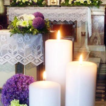 fiori chiesa lilla viola