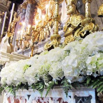 ortensie fiori chiesa