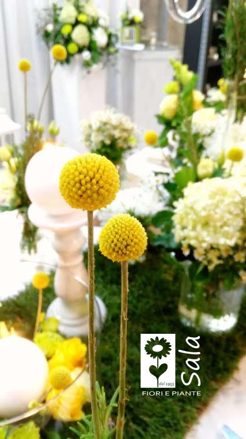 fiera sposi alzano lombardo bergamo fioristi